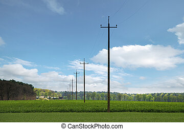 Power poles in field with the green field and clouds in background
