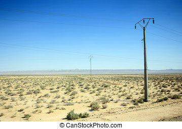 Power poles in Sahara