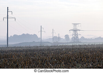 power poles in the field
