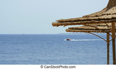 Powerboat ship sails along tropical resort beach - Powerboat...