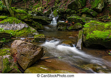 powerful creak with cascade in green forest. tones covered...