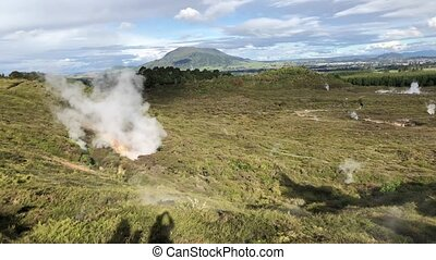 Powerful geysers of Rotorua, New Zealand.