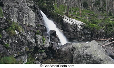 Powerful mountain cascade waterfall in the forest