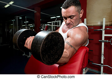 Powerful Muscular Man Lifting Weights - Bodybuilder In Gym...