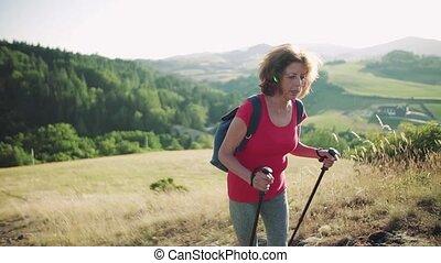 powolny, hiking, motion., turysta, nature., plecak, kobieta...
