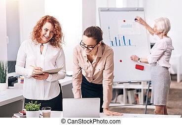 pozitív, colleagues, hivatal, dolgozó