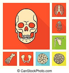 poznaczcie., szkielet, wektor, zbiór, web., kość, pień, symbol, ilustracja, ludzki