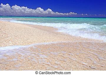 prächtig, sandstrand, landschaftsbild