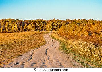 pré, automne, time., coucher soleil, route, vue