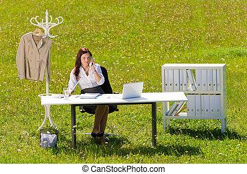 pré, bureau, nature, femme affaires, ensoleillé, appeler