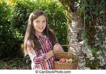 pré, jardin, jeune, adolescent, cueillette, pommes