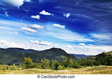 pré, paysage., ciel dramatique, campagne, majestueux