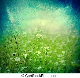pré vert, sous, ciel bleu, à, nuages