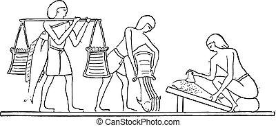 préparation, engraving., vendange, fish