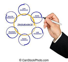 présentation, assurance, diagramme
