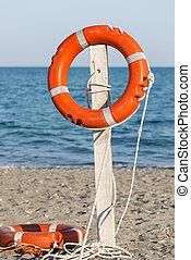 préservateur vie, plage, sablonneux