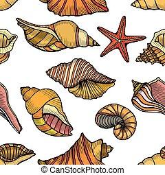 próbka, morskie powłoki