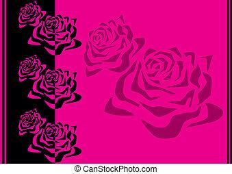 próbka, z, roses.