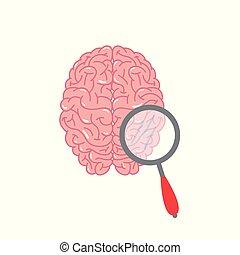 pröva, hjärna, begrepp, vektor