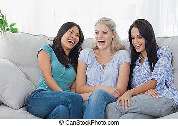 průvodce smích, dohromady