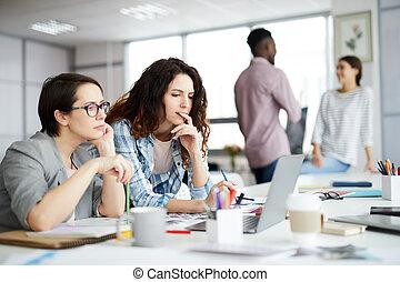 praca, rówieśnik, businesswomen