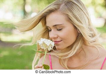 prachtig, inhoud, vrouw, welriekende een bloem, met,...