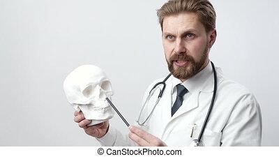 pracownia, brodaty, biały, ludzka czaszka, doktor