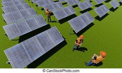 pracownicy, słoneczny, trawa, poduszeczka