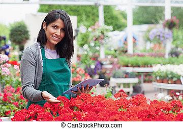 pracownik, wybierając, kwiaty, z, pastylka pc, w, ogrodowy środek