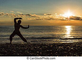 practica, silueta, chun, playa, ala, hombre