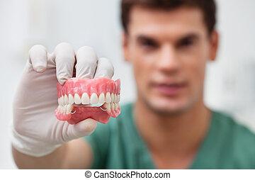 practitioner, dental, macho, molde, segurando
