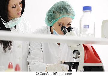 pracujący, dwa, mikroskop, samica, naukowcy, laboratorium