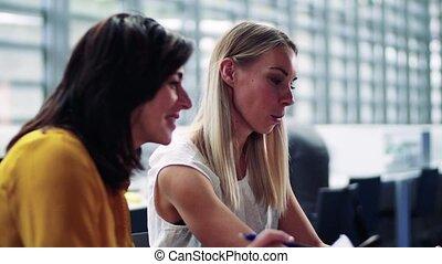 pracujący, laptop, biuro, businesspeople, śmiejąc., samica