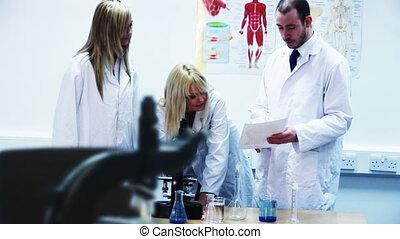 pracujący, mikroskop, laboratorium, naukowcy, młody