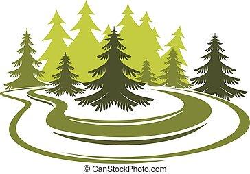 pradera, bosque, claro, verde, piceas, herboso