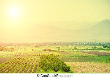 pradera, colinas, y azul, cielo