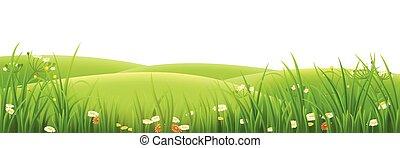 pradera, hierba verde, y, flores