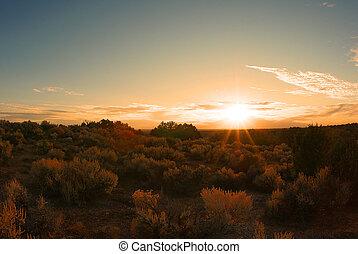 pradera, paisaje, debajo, el, sol