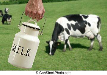 pradera, vaca, olla, mano, granjero, leche