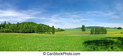 pradera verde, y azul, cielo, durante, el, primavera