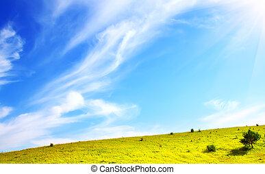 pradera verde, y azul, cielo