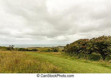 praderas, y, mar, en, downs, cerca, eastbourne