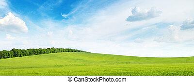 prado, azul, céu