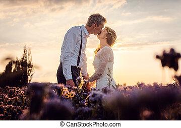 prado, par, após, pôr do sol, casório, durante, nupcial, beijando