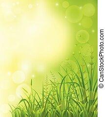 prado verde, fundo