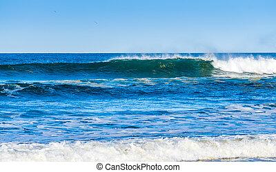 praia, 5, ondas, longo