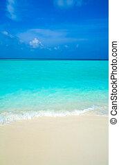 praia areia, e, onda oceano, ari-atoll., maldives
