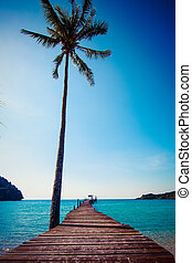 praia, boardwalk, resort., tropicais