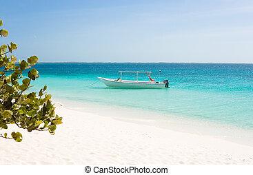 praia branca, bote