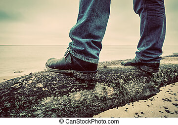 praia, caído, sea., árvore, selvagem, homem, sapatos, ficar...